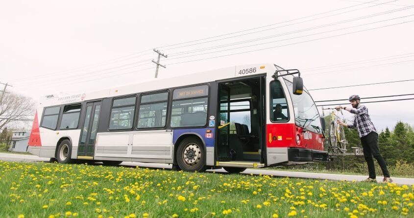 Saint John Transit
